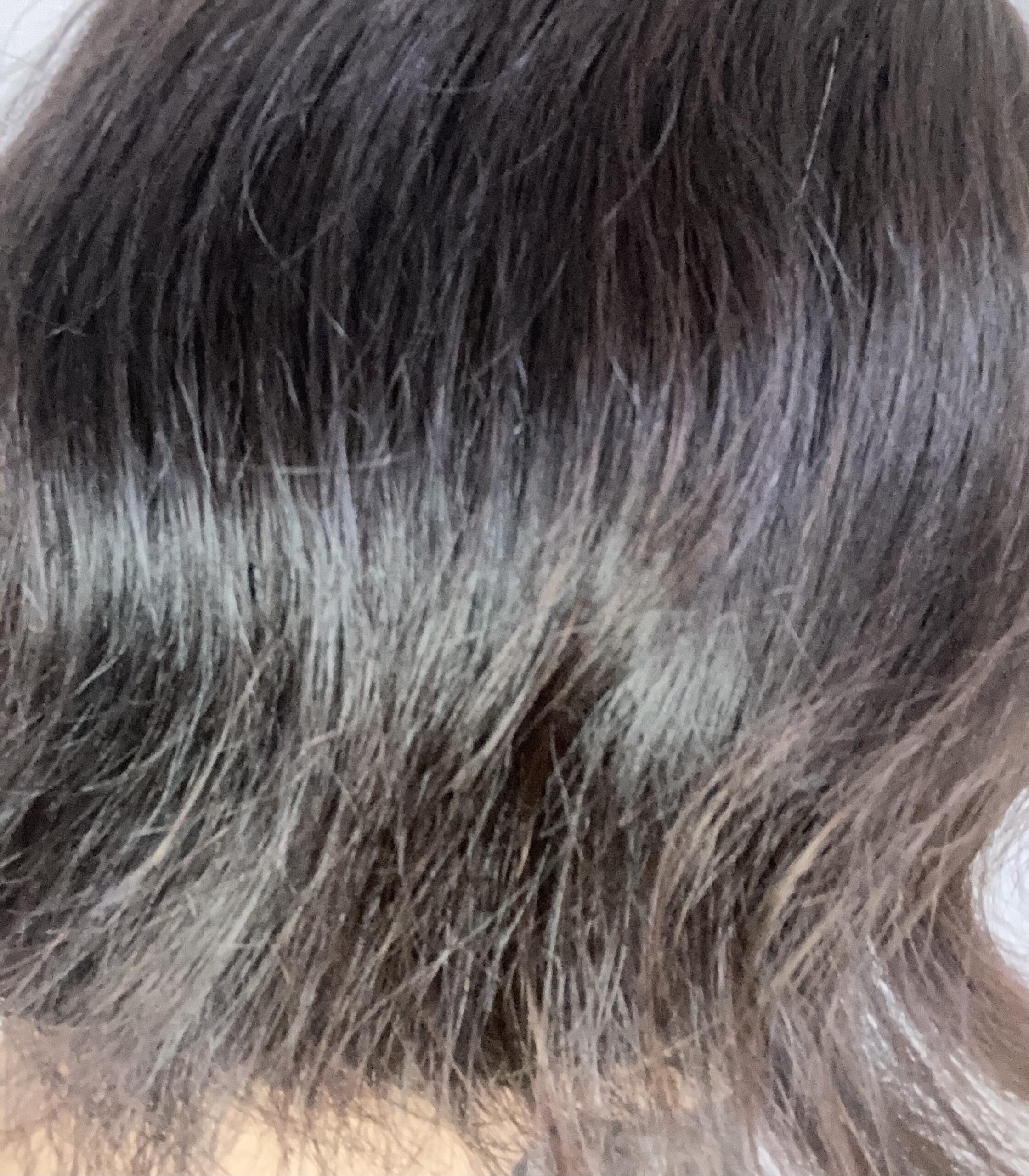 ボサボサ髪
